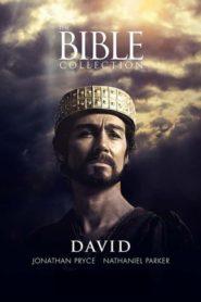 Библейские сказания. Давид / David