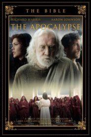 Библейские сказания. Апокалипсис – Откровение Иоанна Богослова / San Giovanni – L'apocalisse
